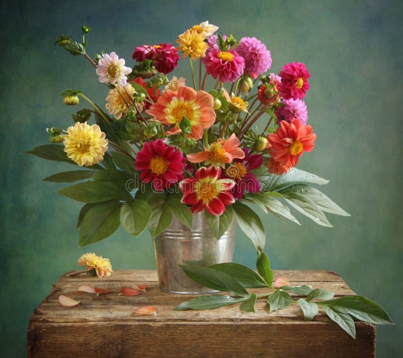 Bouquet de dahlia images libres de droits