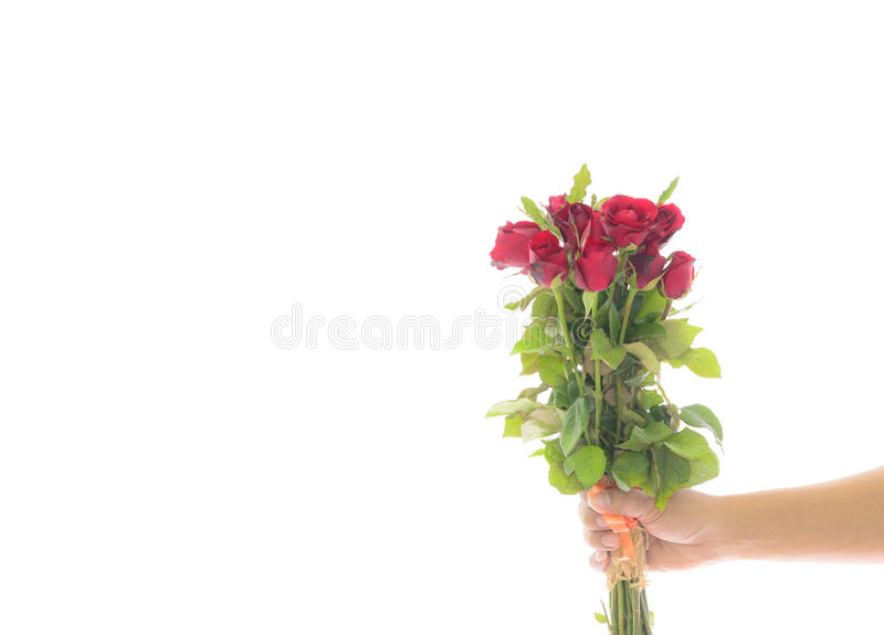 Bouquet de fixation de main des roses rouges image libre de droits