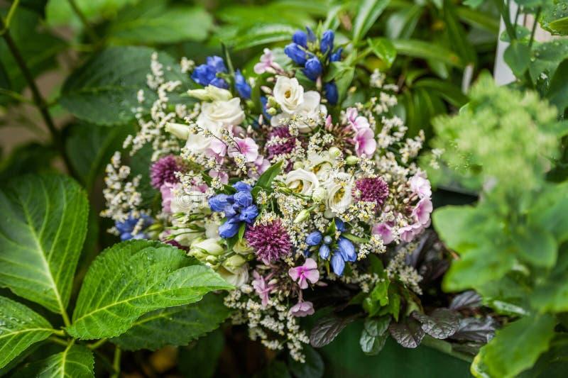 Bouquet de fleur en végétation de jardin photographie stock libre de droits