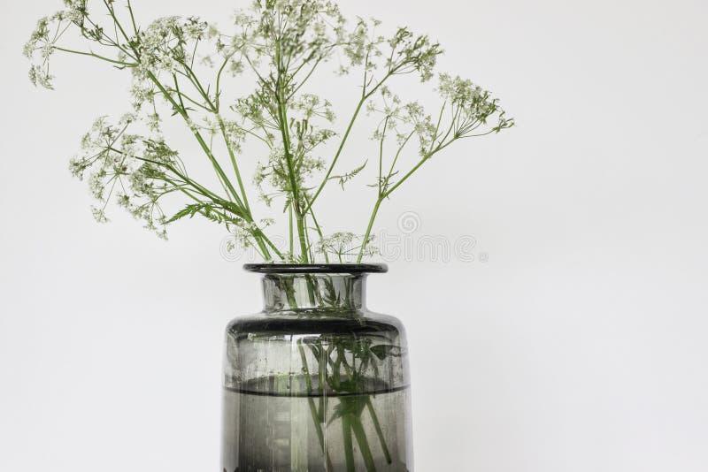 Bouquet de fleur sauvage dans le vase en verre sur la table photographie stock