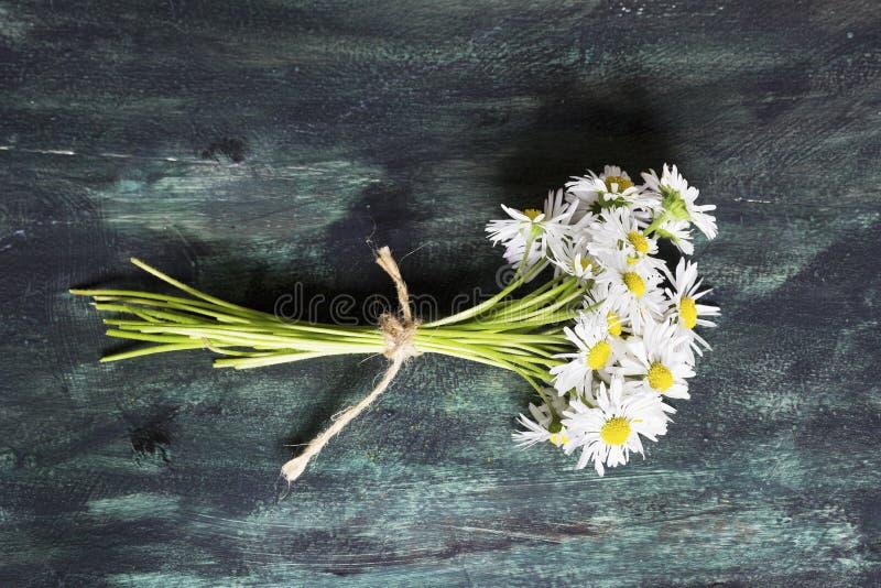 Bouquet de la marguerite blanche photographie stock libre de droits