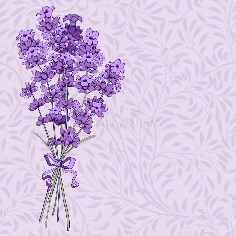 Bouquet de lavande illustration de vecteur