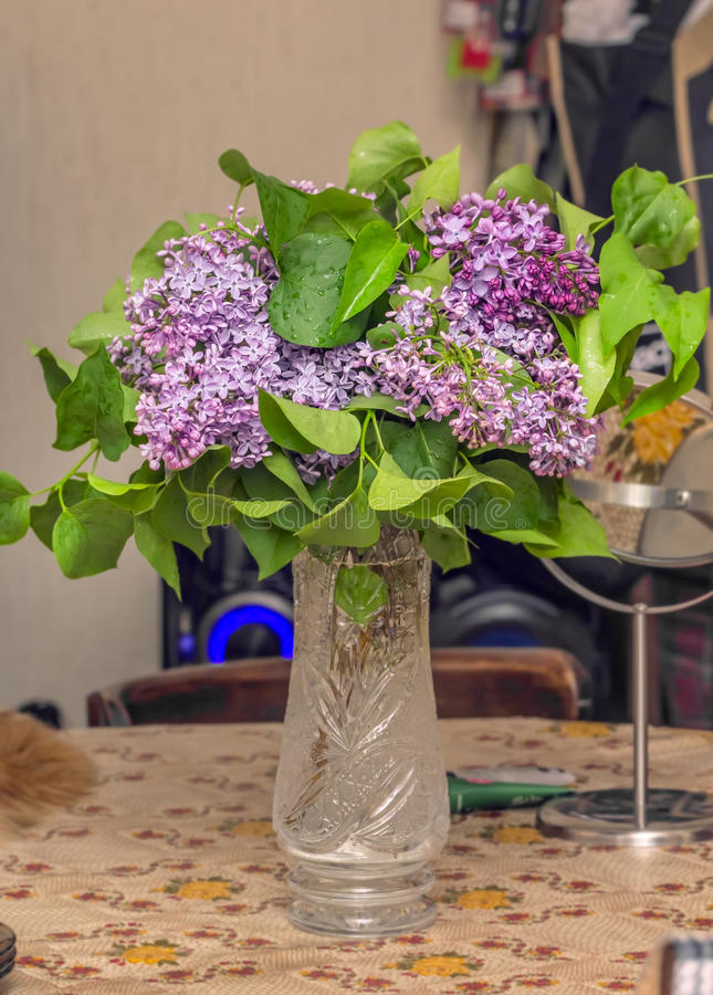 Download Bouquet de lilas photo stock. Image du ressort, vase - 56484046