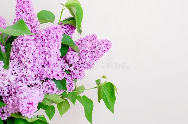 Bouquet de lilas dans un vase photographie stock