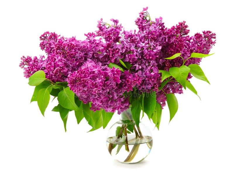 Bouquet de lilas dans un vase en verre image stock