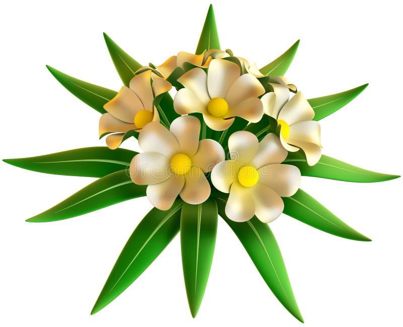 Bouquet de mariage des fleurs blanches illustration libre de droits