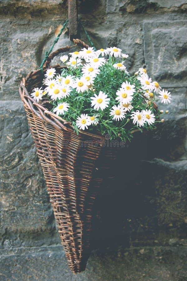 Bouquet de matin photographie stock