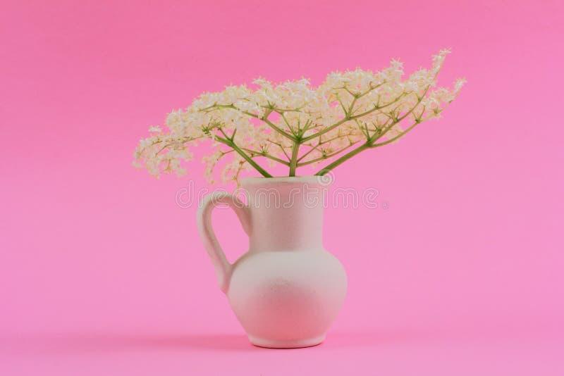 Bouquet de petites fleurs blanches sensibles de baie de sureau dans une cruche blanche sur un fond en pastel rose images stock