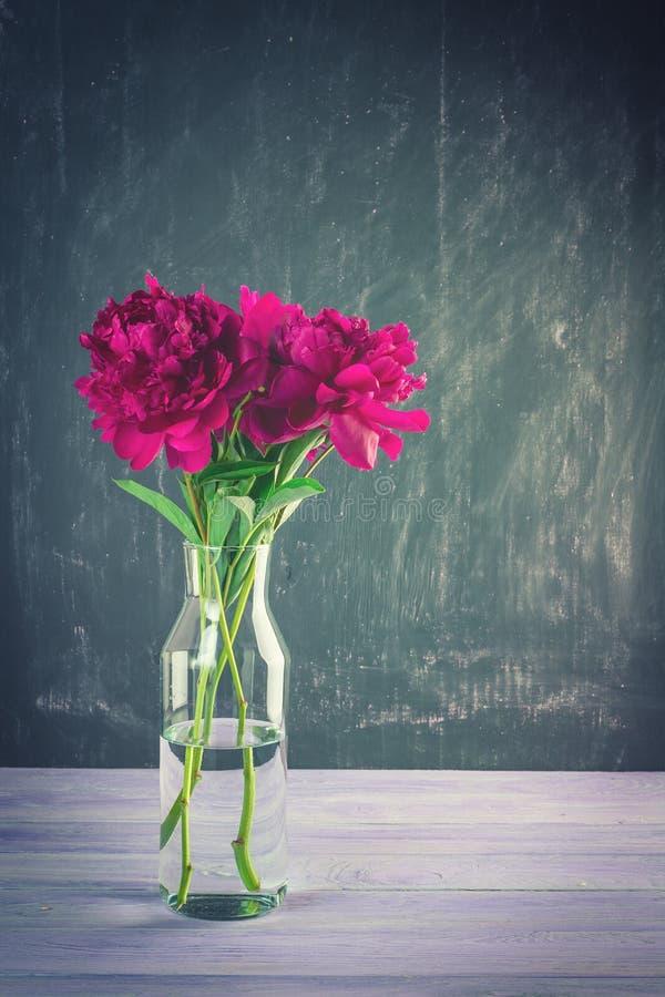 Bouquet de pivoines modifié la tonalité photos stock
