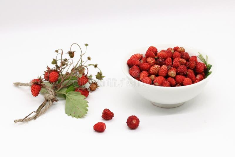 Bouquet de plan rapproché de baies de fraisier commun image libre de droits