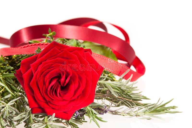 Bouquet de Rose avec des herbes photos stock