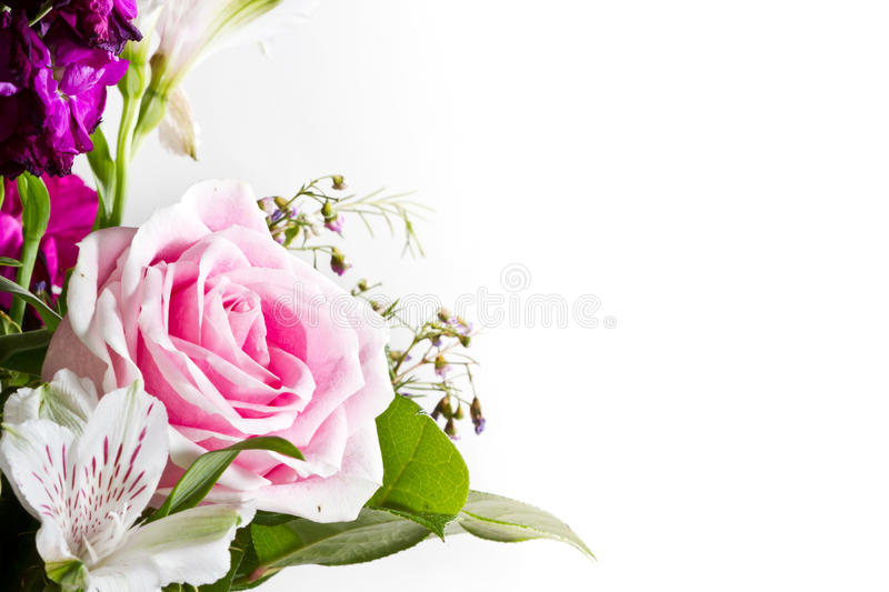 Bouquet de rose de rose photo libre de droits