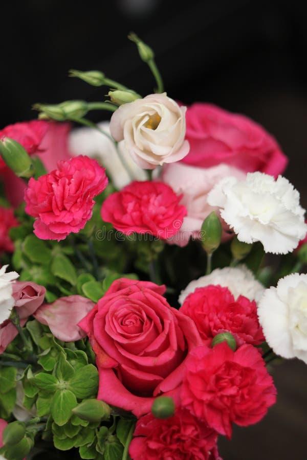 Bouquet de rose 1512 images stock