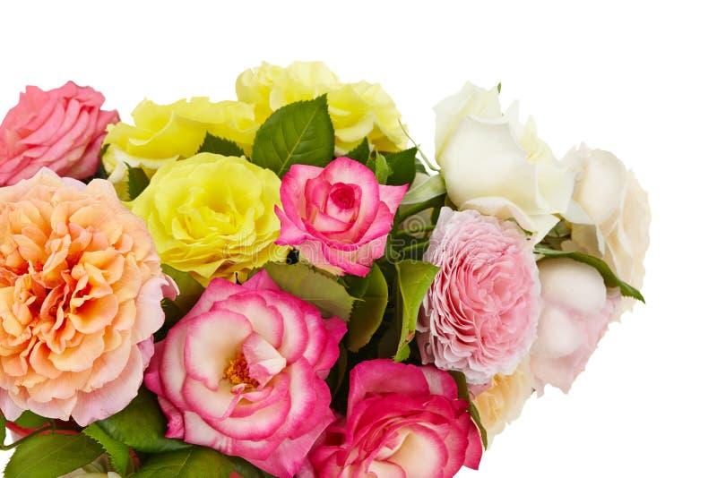 Bouquet de roses sur un fond blanc d'isolement photo libre de droits