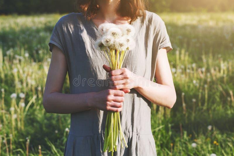 Bouquet de toile de port de participation de robe de femme de belles fleurs fra?ches de pissenlit, fin  photographie stock libre de droits