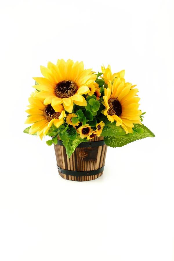Bouquet de tournesol dans le pot de fleurs en bois sur le fond blanc photo libre de droits