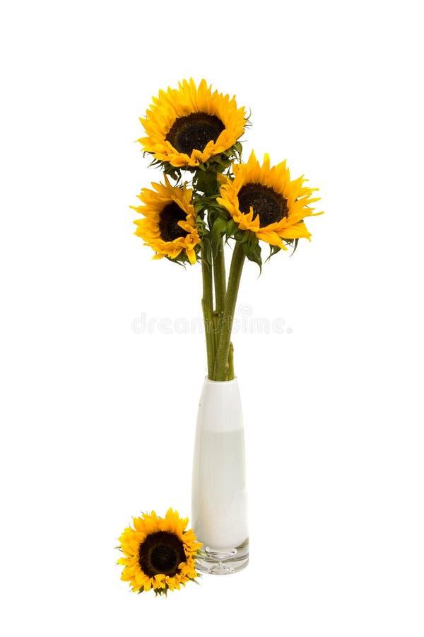 bouquet de tournesol awesome bouquet centre de table tournesol with bouquet de tournesol good. Black Bedroom Furniture Sets. Home Design Ideas