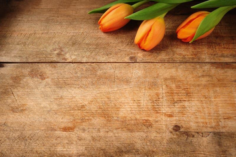 Bouquet de tulipe sur le fond en bois photos libres de droits