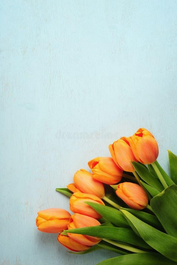 Bouquet de tulipe sur le fond en bois bleu photo stock