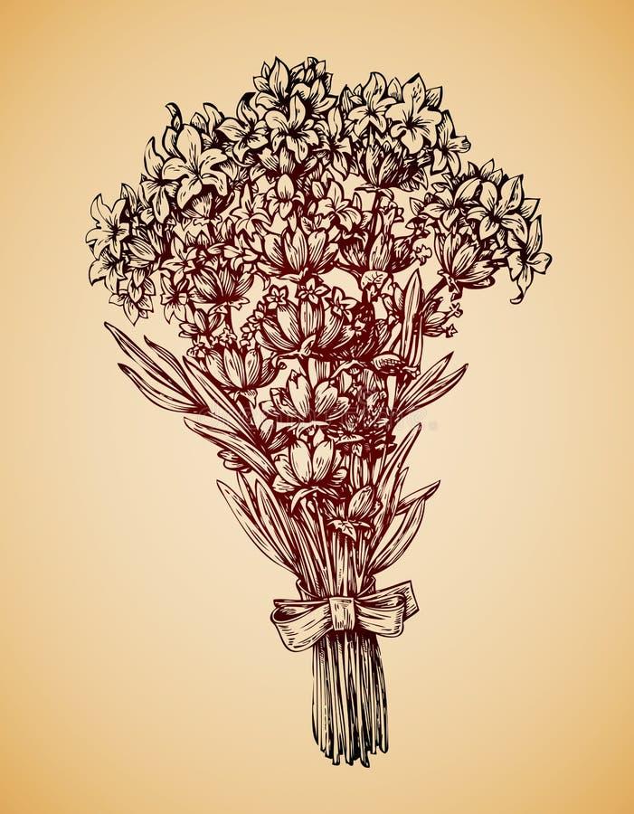 Bouquet de vintage des fleurs Rétro fleur tirée par la main de lavande de croquis Illustration de vecteur illustration stock