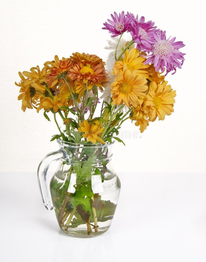 Bouquet des chrysanthèmes images libres de droits