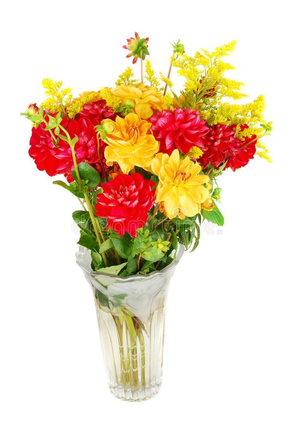 Bouquet des fleurs de dahlia photos stock