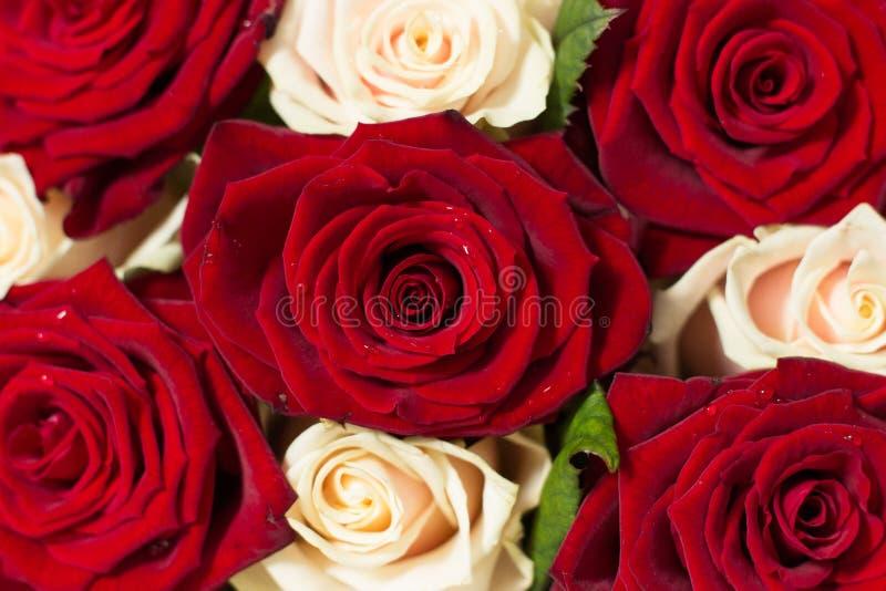 Bouquet des fleurs et des baisses de rosée photos stock