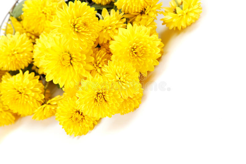 Bouquet des fleurs jaunes chrysanth mes photo stock for Bouquet de fleurs jaunes