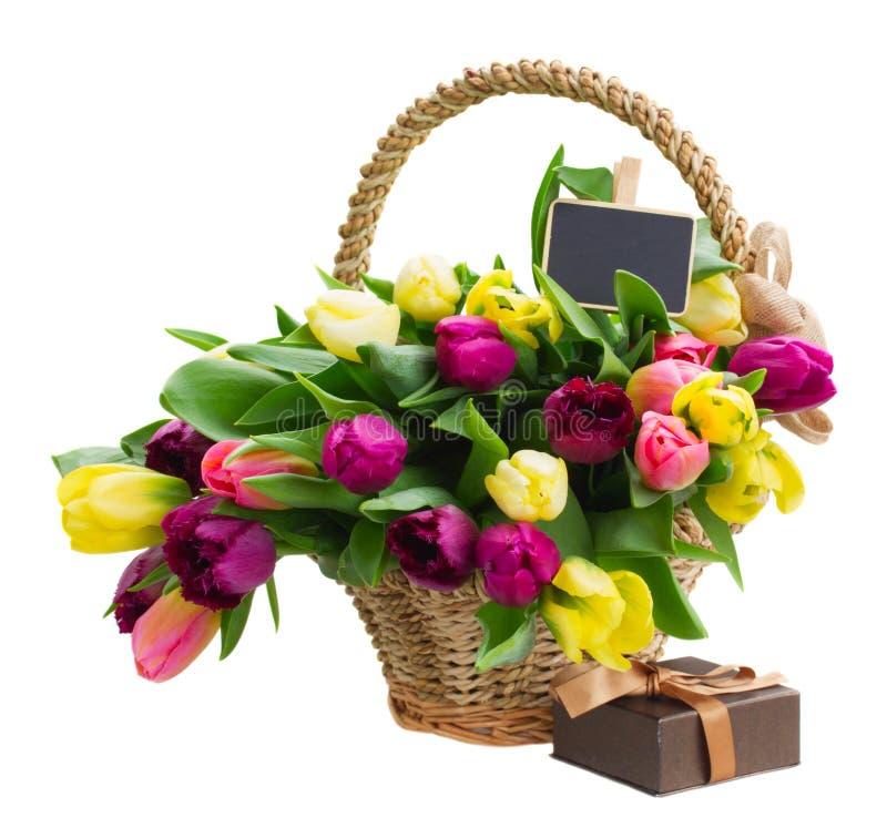 Bouquet des fleurs jaunes et pourpres de tulipe photos libres de droits