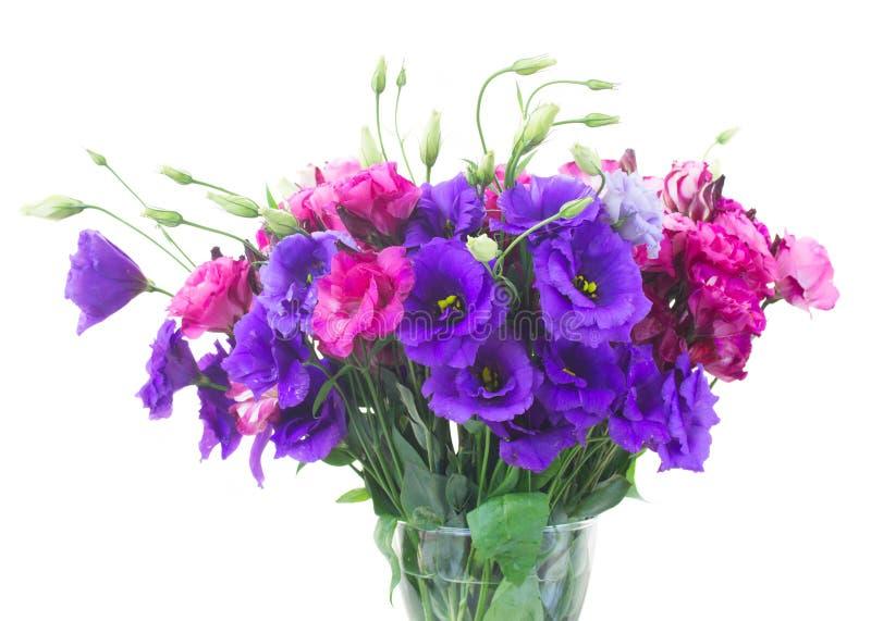Bouquet des fleurs pourpres et mauve d'eustoma images libres de droits