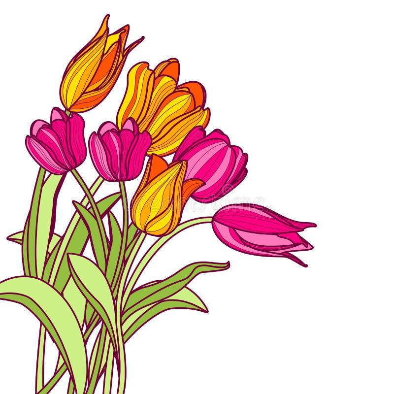 Bouquet des fleurs roses et jaunes tirées par la main de tulipe, dessus illustration stock