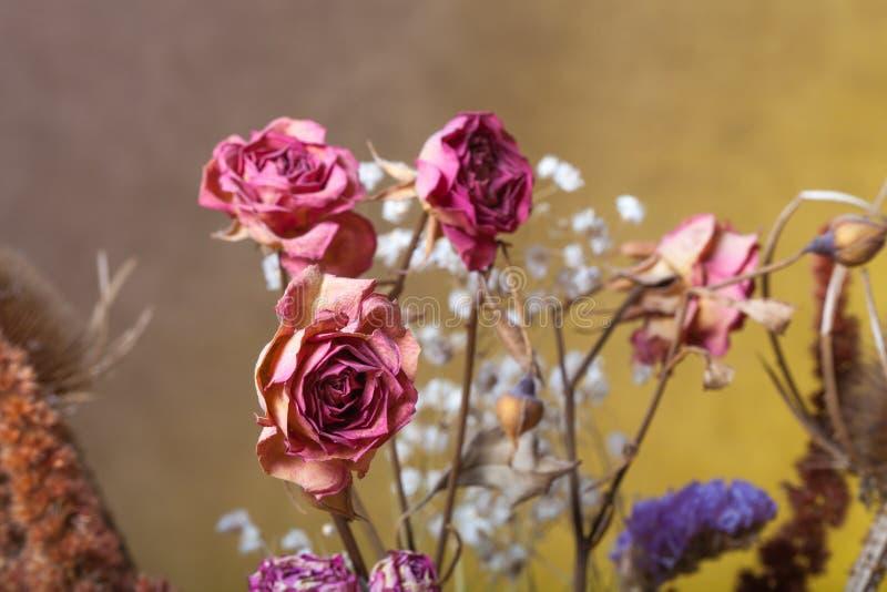 Bouquet des fleurs sèches sur le fond de toile de jute Foyer sélectif photos stock