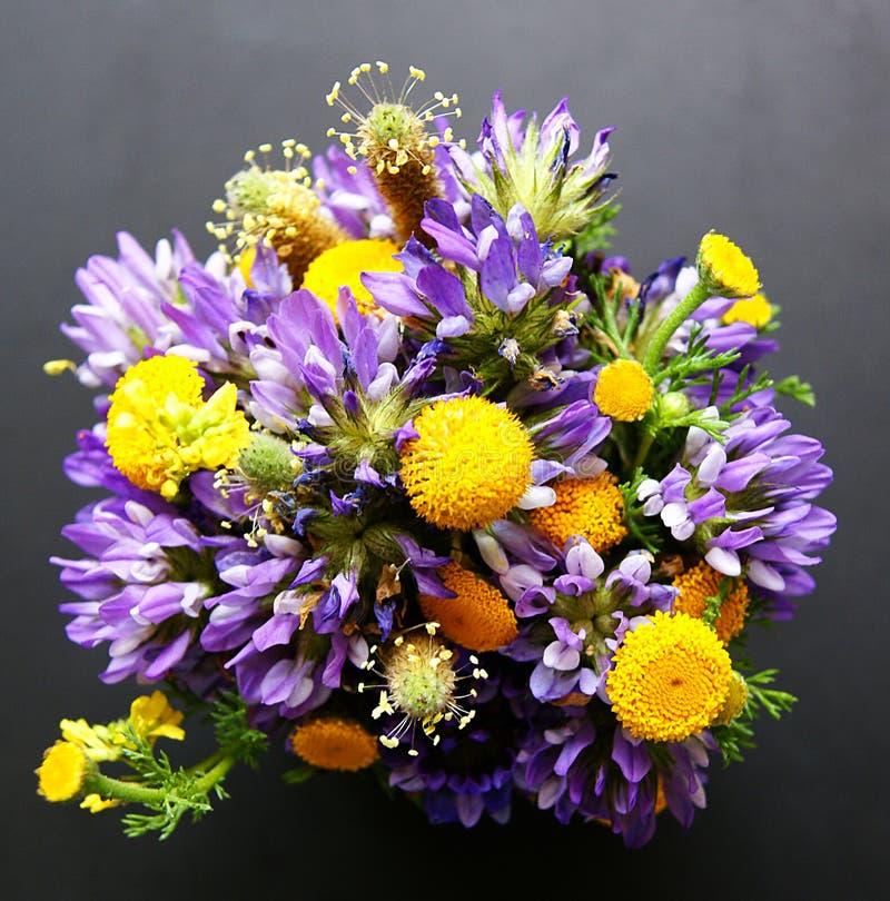 Bouquet des fleurs sauvages photo stock image du pourpr nature 21502678 - Bouquet de fleurs sauvages ...