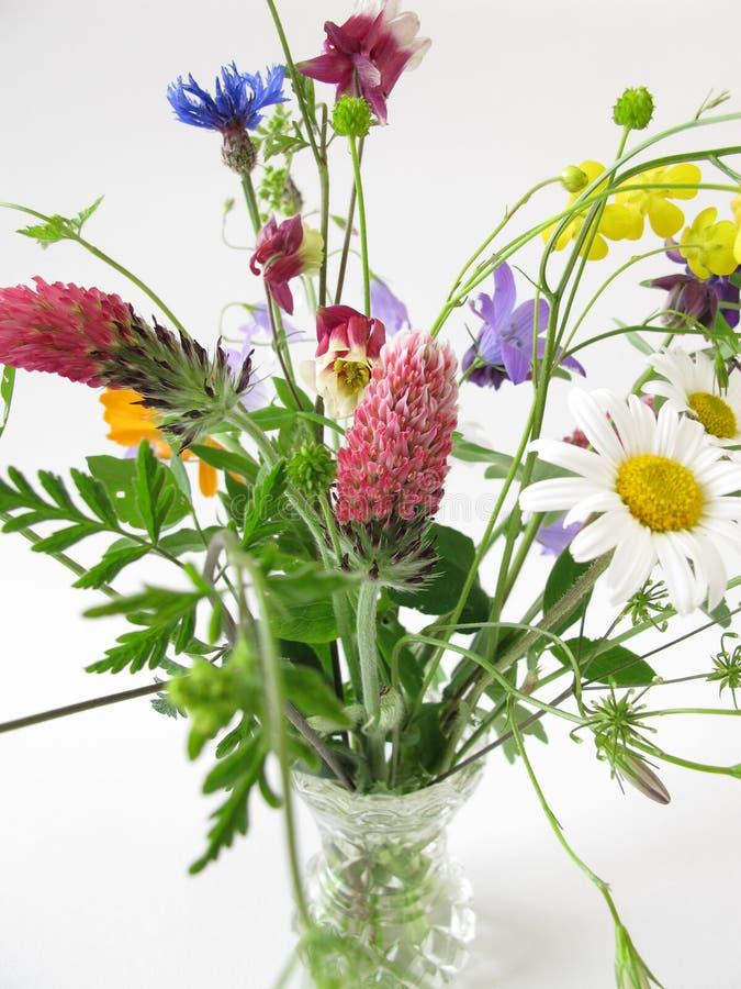 bouquet des fleurs sauvages photo stock image du fleurs sauvage 40962664. Black Bedroom Furniture Sets. Home Design Ideas