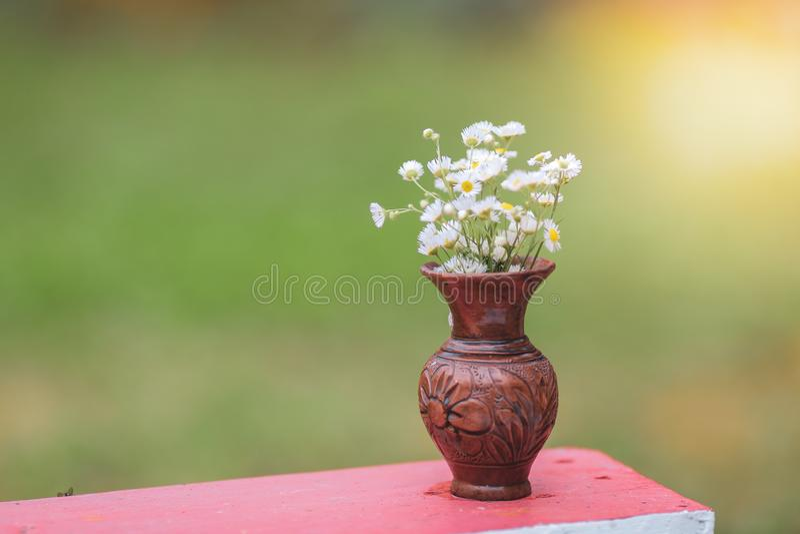 Bouquet des fleurs sauvages sauvages colorées dans un pot d'argile cassé étendu sur l'herbe photo libre de droits