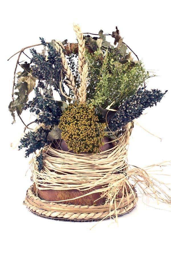 Bouquet des herbes sèches photographie stock libre de droits
