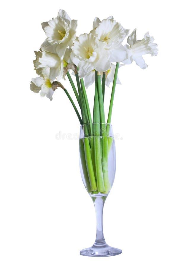 Bouquet des jonquilles dans un verre photo stock