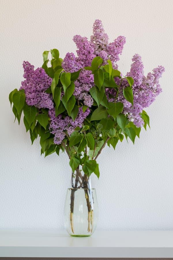 Bouquet des lilas dans un vase en verre sur le fond blanc photographie stock