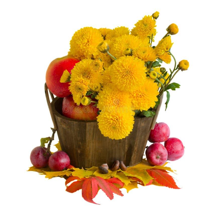 Bouquet des mamans jaunes avec des pommes photographie stock