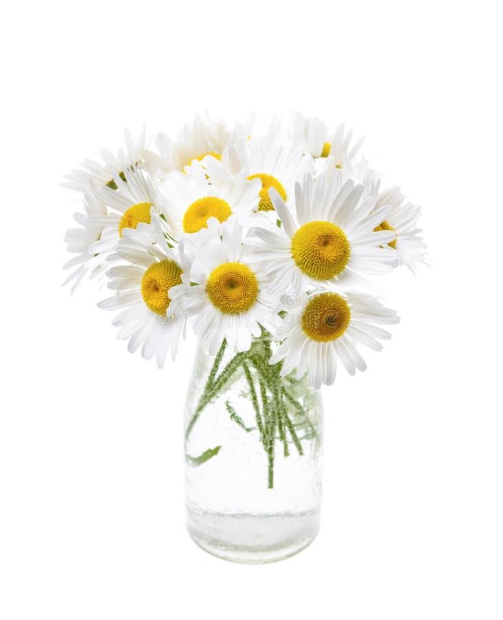 Bouquet des marguerites photos stock