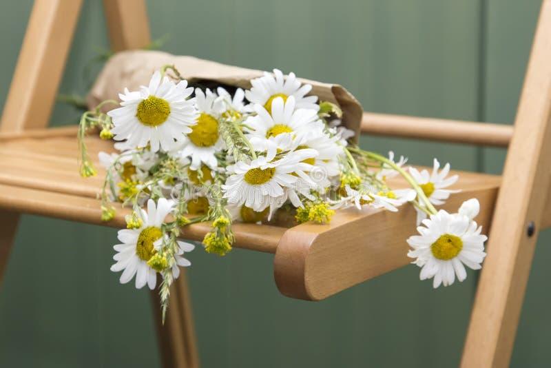 Bouquet des marguerites se trouvant sur une chaise en bois photos stock