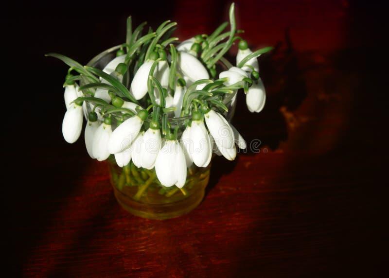 Bouquet des perce-neige dans un vase en verre sur une table en bois dans la lumière de matin du soleil photo stock