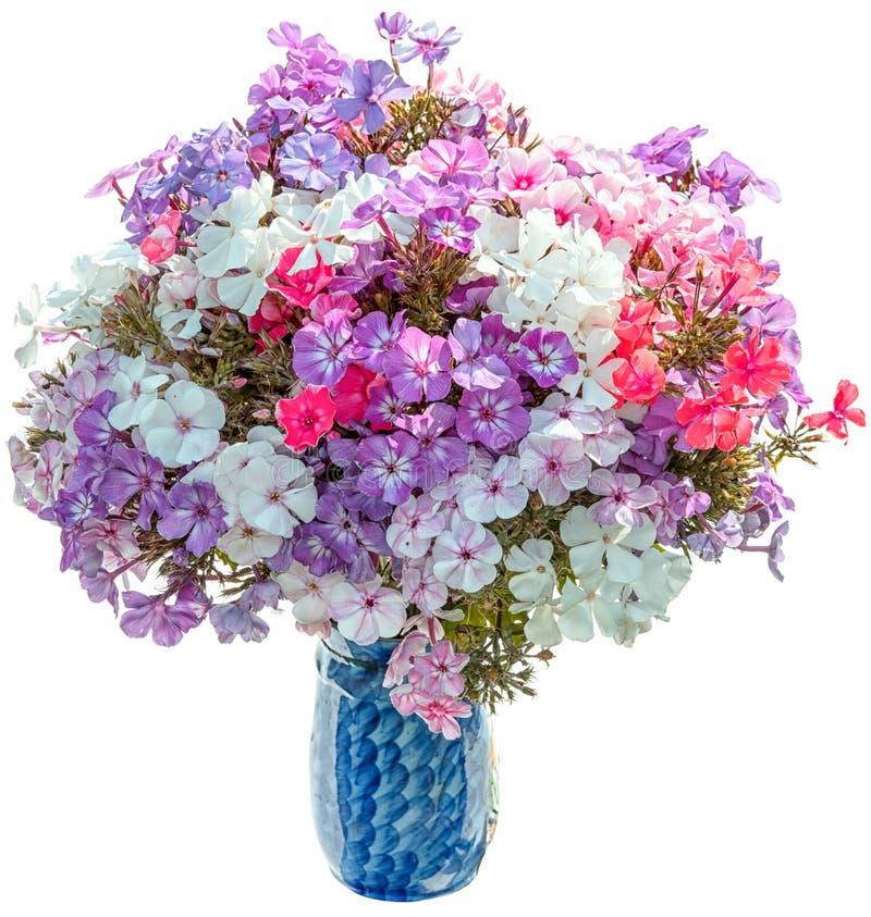Bouquet des phlox images stock