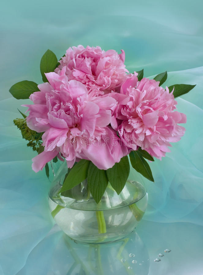 Bouquet des pivoines images stock