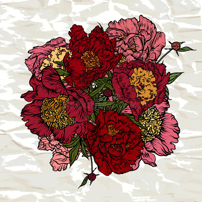 Bouquet des pivoines rouges illustration de vecteur illustration du image pivoine 65478954 - Rouge comme une pivoine ...