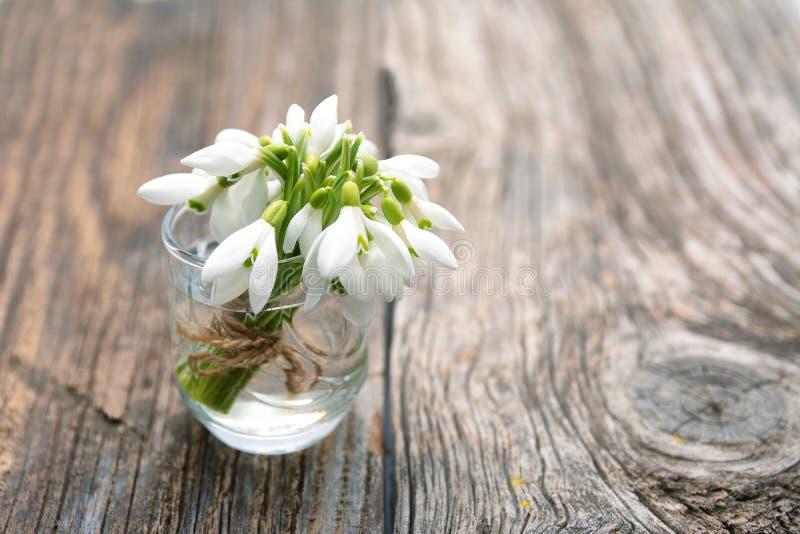 Bouquet des premiers perce-neige de fleurs de beau ressort photographie stock libre de droits