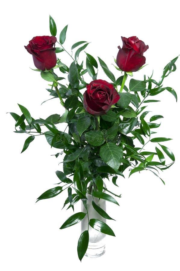 Bouquet des roses d'isolement photos libres de droits