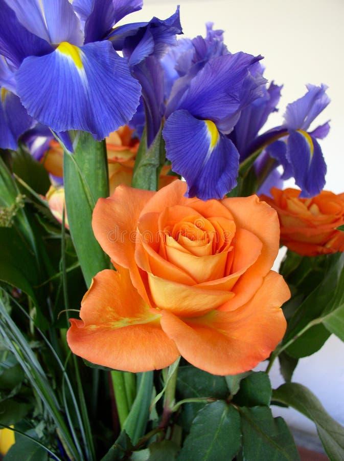 Bouquet des roses et l'Iris Orange et le thème bleu images stock
