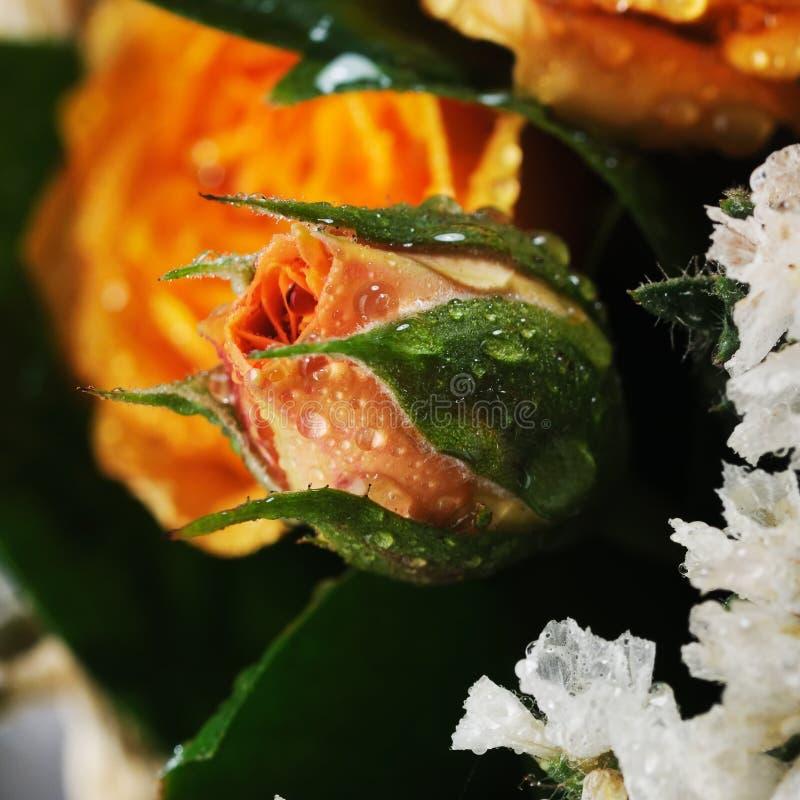 Bouquet des roses jaunes. photographie stock