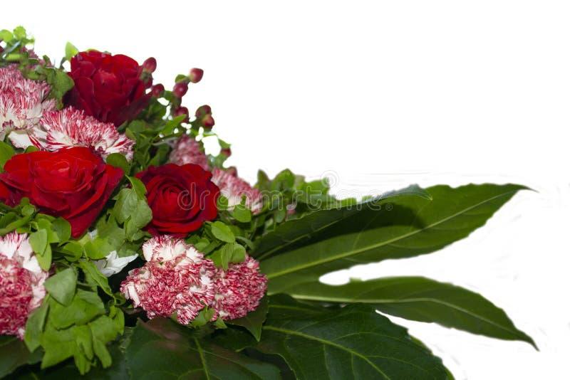 Bouquet des roses, oeillets, berbéris images libres de droits